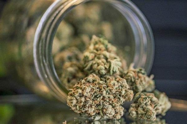 Purchase and score weed through weed shop online Canada