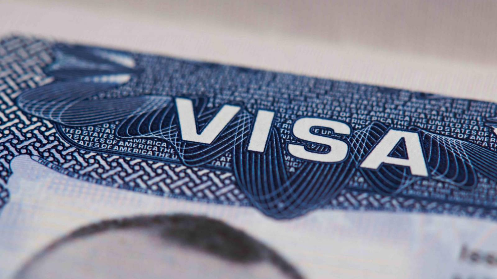 The immigration law firm helps you process your Canada startup visa