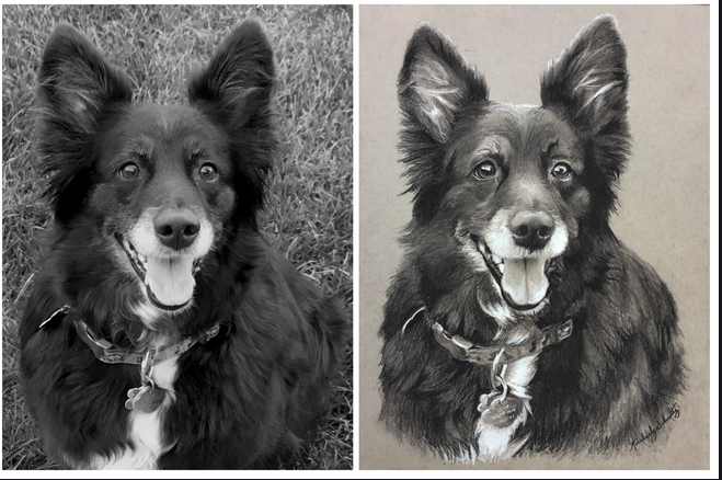 You must complete all the requested information for the purchase of the pet portraits
