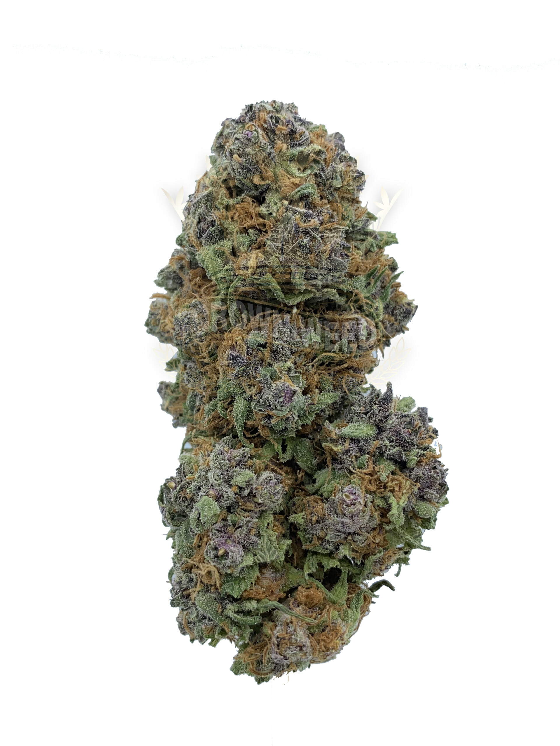 Acquire the necessary information about dispensary weed cannabis vapers.