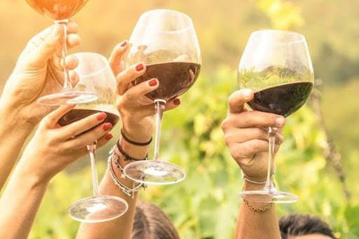 Tuscany Wine Experience Suggestions