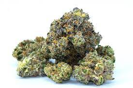 Find out what the Cannabis Light task is approximately and why it is the most trusted weed option