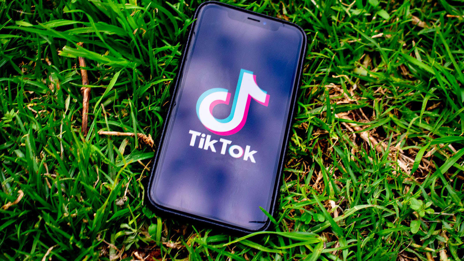 What you must find out about tiktok
