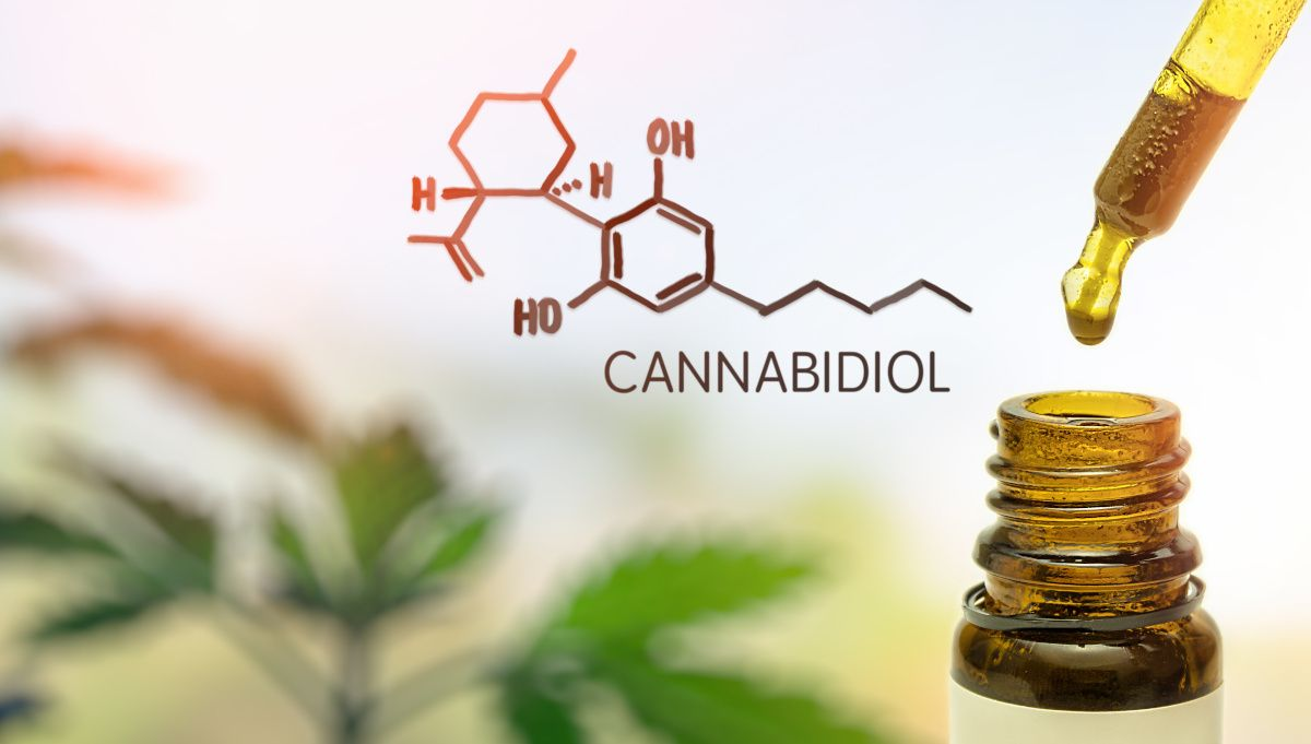 Find out how you can find a CBD Shop in France that meets your quality-price expectations